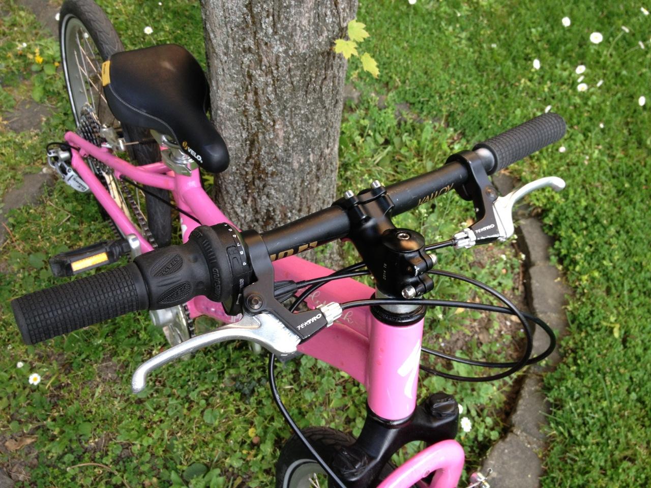 Hotrock 20 tuning pink 2